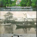 Frieseveen klein